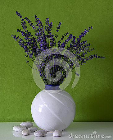 Lavender in the room