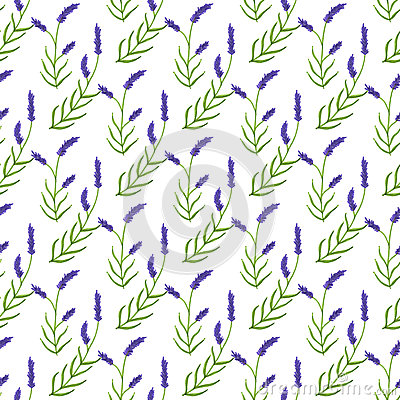 Free Lavender. Seamless Pattern With Flowers. Hand Stock Images - 60240914