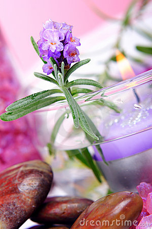 Free Lavender SPA Royalty Free Stock Images - 1448599