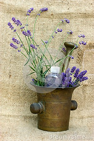 Lavender - spa treatment