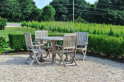 Lawn chairs by the vineyard