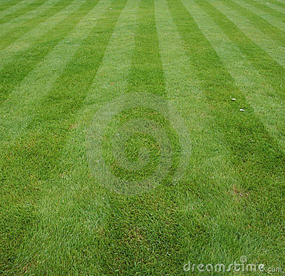 Free Lawn Cut With Stripes Stock Photo - 3862740