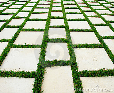 Lawn and rustic paving texture