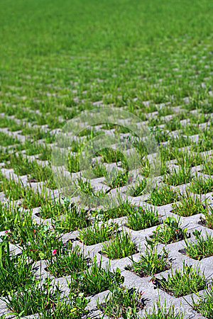 Free Lawn Stone Royalty Free Stock Photography - 9972277