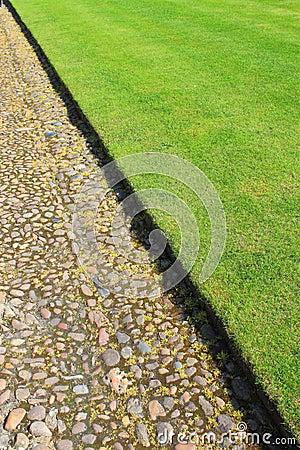Green Lawn Stone Path