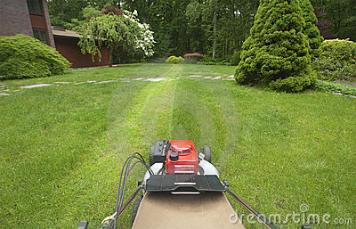 Lawnmower cutting lawn
