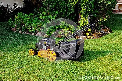 Lawnmower da gasolina de quatro cursos.