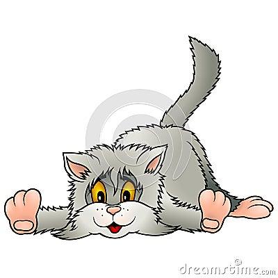 Laying Gray Kitten