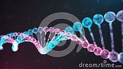 Lazo bicolor de la cadena de la DNA libre illustration