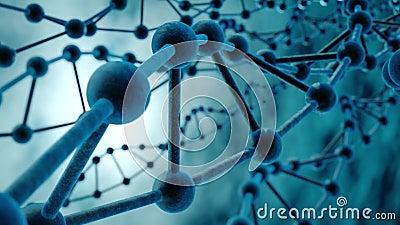 Lazo de la DNA