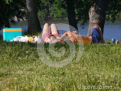 Lazy-picnic