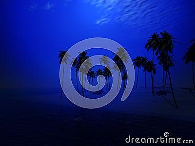 Île 44 de palmier