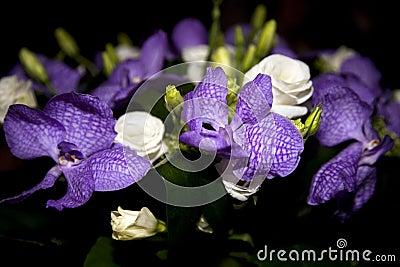 Bouquet des roses et des iris