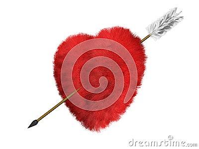 Le coeur de fourrure est une cible