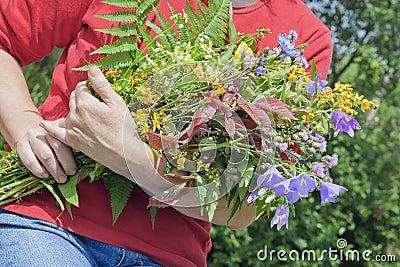 le femme retient le bouquet des fleurs sauvages image libre de droits image 20085746. Black Bedroom Furniture Sets. Home Design Ideas