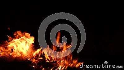 Le feu de brûlure avec du bois banque de vidéos