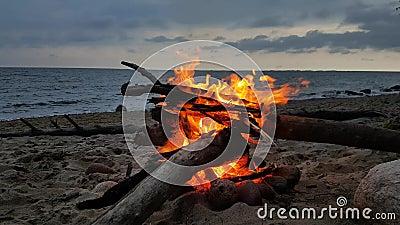 Le feu sur une plage au crépuscule banque de vidéos