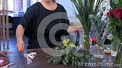 Le fleuriste de femme prépare des fleurs d'eucalyptus et d'iris pour le bouquet dans le magasin à vendre banque de vidéos