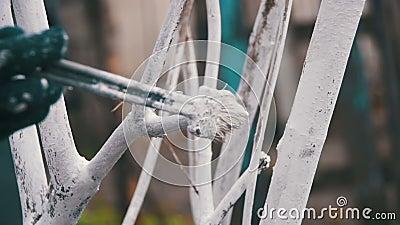 Le jardinier Whitewash Tree Trunk avec la craie dans le jardin, arbre s'inquiètent au printemps Mouvement lent banque de vidéos
