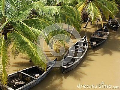 Le Kerala pluvieux