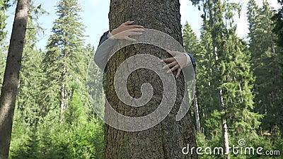 Le plan rapproché de la jeune femme d'écologiste étreignant un arbre remercient la détente en nature de forêt - banque de vidéos