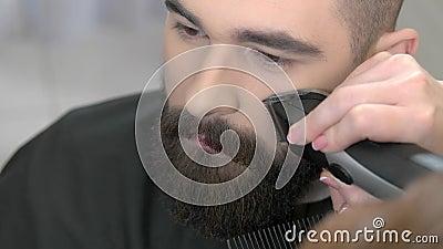 Le processus de toilettage de barbe, se ferment