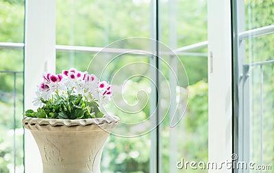 le vase terre cuite ou le pot de fleurs avec le g ranium fleurit au dessus de la fen tre dans. Black Bedroom Furniture Sets. Home Design Ideas
