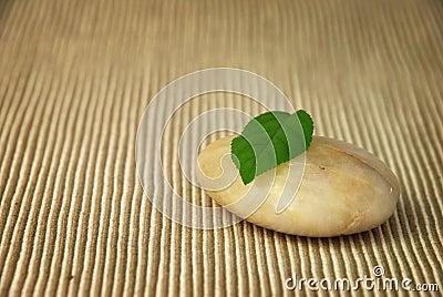 Leaf balanced on Stone.