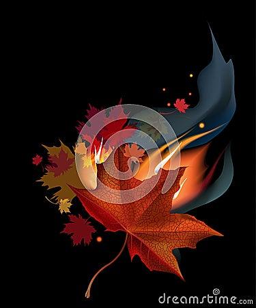 Leaf in fire