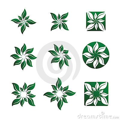 Leaf and Flower Vector Illustrations