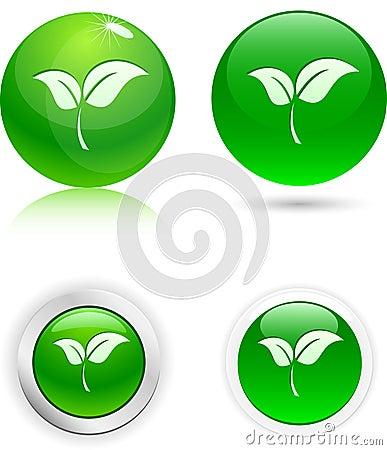 Leaf icons.