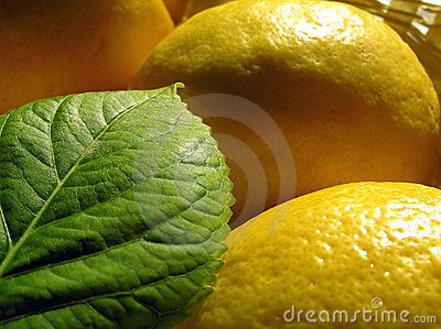 Leaf and lemons