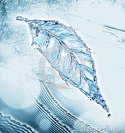 Leaf made of water splash Stock Photo