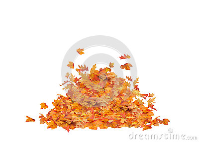 Leaf Pile Isolated