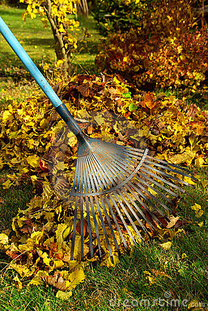 Free Leafs Rake 03 Royalty Free Stock Images - 3953639