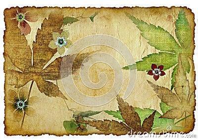 Leafy card