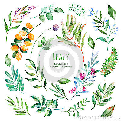 Free Leafy Collection.22 Handpainted Watercolor Floral Elements. Stock Images - 72539764
