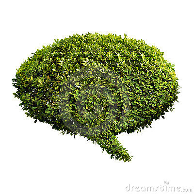 Leafy green speech bubble