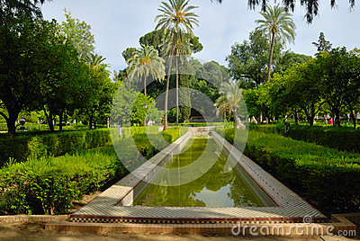 Leafy park