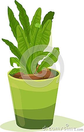 Leafy pot