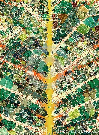 Leafy veins