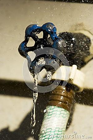 Leaking Outdoor Spigot