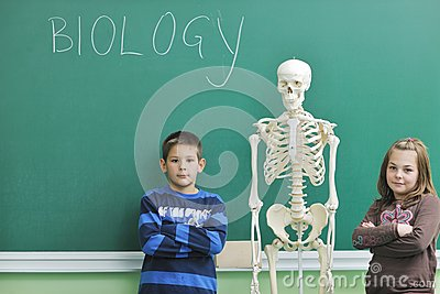 Learn biology in school