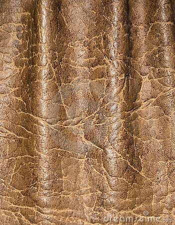 Leather skin textured