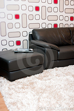 Leather sofa in stylish home