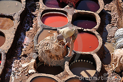 Leather tanning business plan