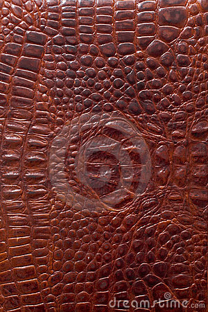 Free Leather Texture Royalty Free Stock Image - 2035026