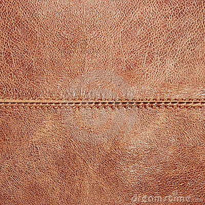Free Leather Texture Stock Photography - 4075442