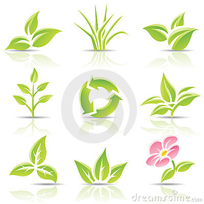 Free Leaves And A Flower Royalty Free Stock Image - 20232366
