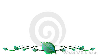Leaves with barbed wire